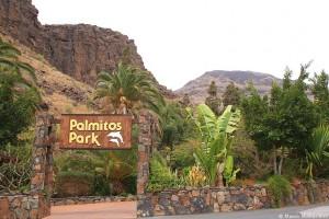 Пальмитос Парк возле Плайа дель Инглес